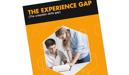 Experience Gap ()